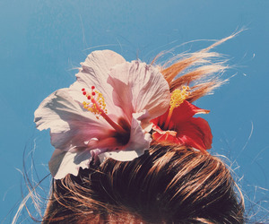 flowers, hair, and summer image