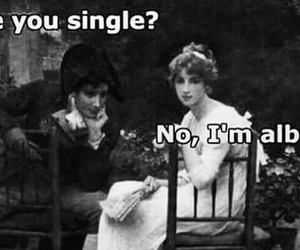 funny, lol, and single image