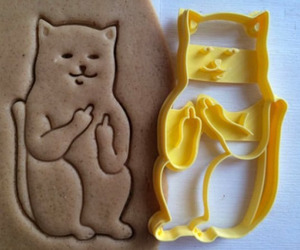 awesome, cookie, and cat image