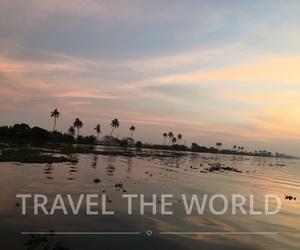 palms, sunset, and travel image