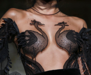 beauty, black swan, and expensive image