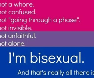 bisexuality, gay, and bisex image