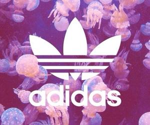 adidas and Logo image