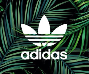 adidas and Originals image