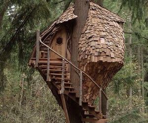 cedar, spiral stairs, and tree house image