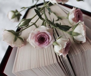 bed, book, and flower image