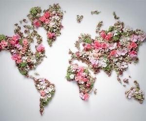 flowers, map, and world image