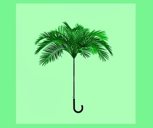 umbrella, green, and palm trees image