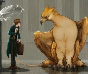 cool, fantastic beasts, and cute image