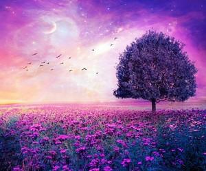 tree, purple, and Dream image