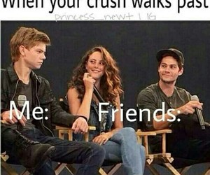 crush, funny, and newt image