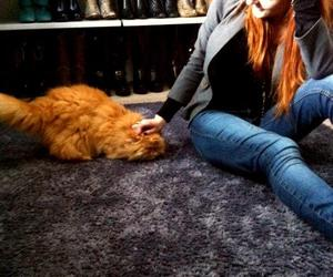 cat, redhead, and shoes image