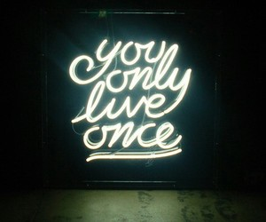 yolo, light, and live image