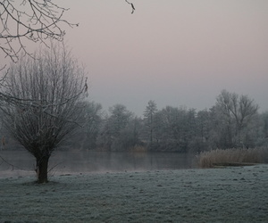 cold, frost, and landscape image