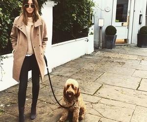 eleanor calder, dog, and eleanor image