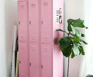 pink, plants, and tumblr image