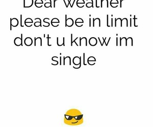 lol, single, and winter image