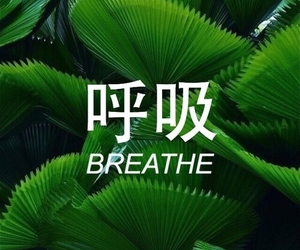 green, breathe, and grunge image