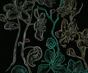 black, flowers, and flower image