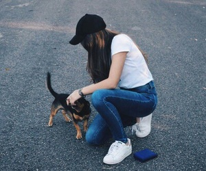 dog, favorite, and street image