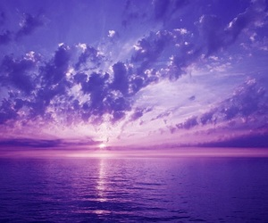 amazing, beautiful, and violet image
