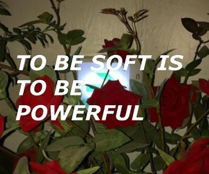 quote, aesthetic, and pastel image