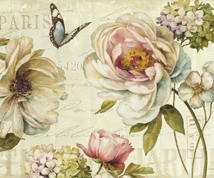 flores, rosas, and vintage image