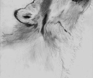 art, amazing, and draw image
