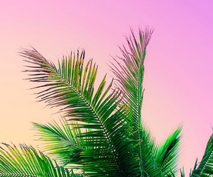 colorful, good morning, and gradient image
