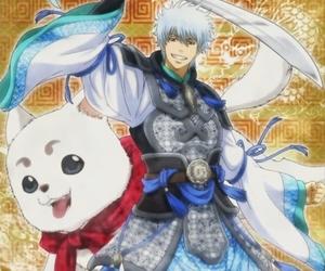 anime, sakata gintoki, and shinpachi image