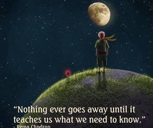 quotes, life, and teach image
