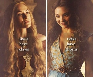 game of thrones, lions, and roses image
