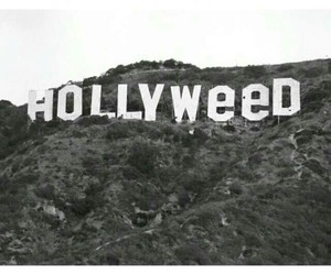 weed, hollywood, and funny image