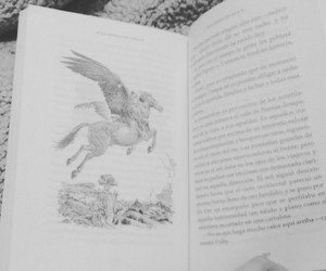 book, narnia, and read image
