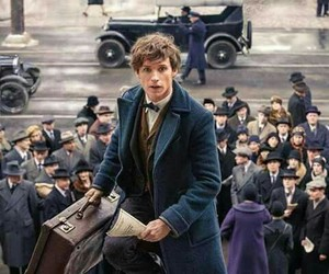 harry potter, newt scamander, and eddie redmayne image