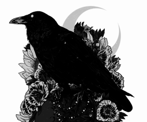 crow, art, and skull image