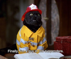 black cat, firefighter, and sabrina the teenage witch image