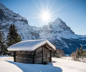 log cabin, nature, and snow image