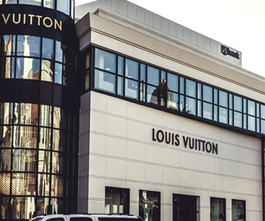 Louis Vuitton, luxury, and car image