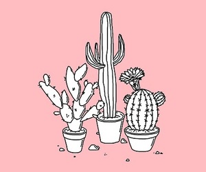 cactus, dibujo, and paint image