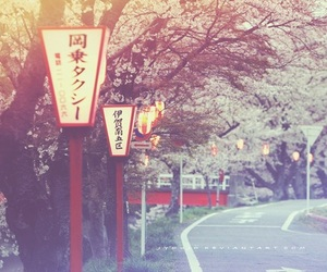 april, cherry blossom, and japan image