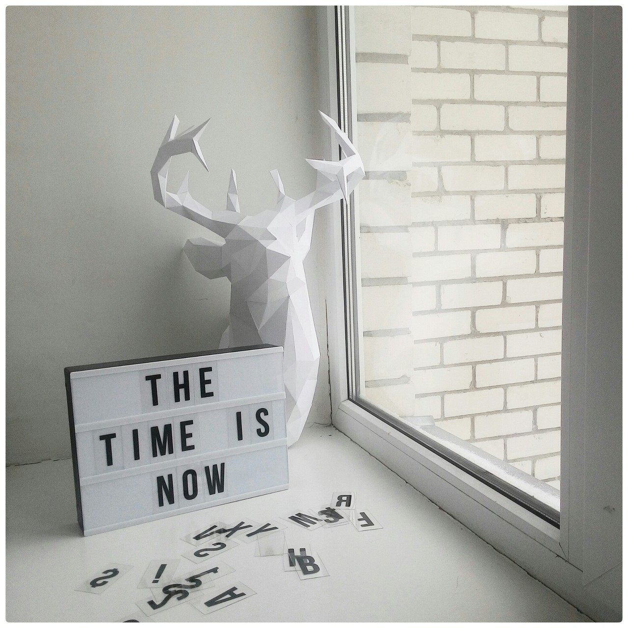 deer, home, and white image