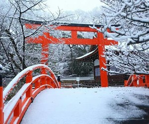 Giappone, japan, and snow image