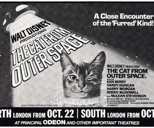 cat, kitsch, and movie poster image