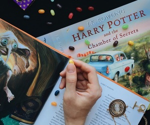 chamber of secrets, harry potter, and giratempo image