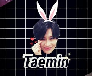 SHINee, Taemin, and wallpaper image