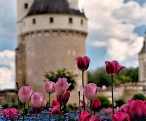 castle, flowers, and tulips image