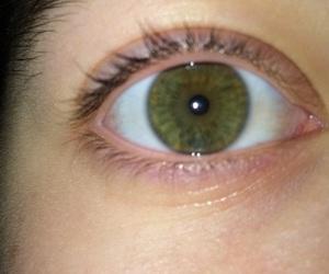 eye and greeneye image