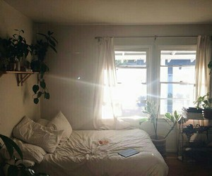 bed, plants, and white image