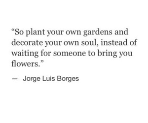 flowers, garden, and logic image